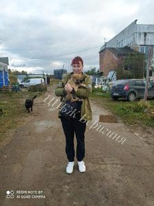 Собака Фика приют Беригиня